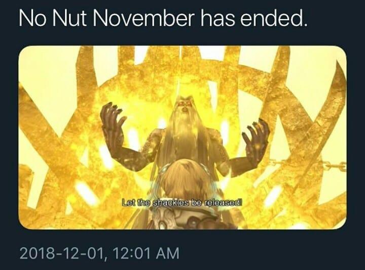 nonutt november