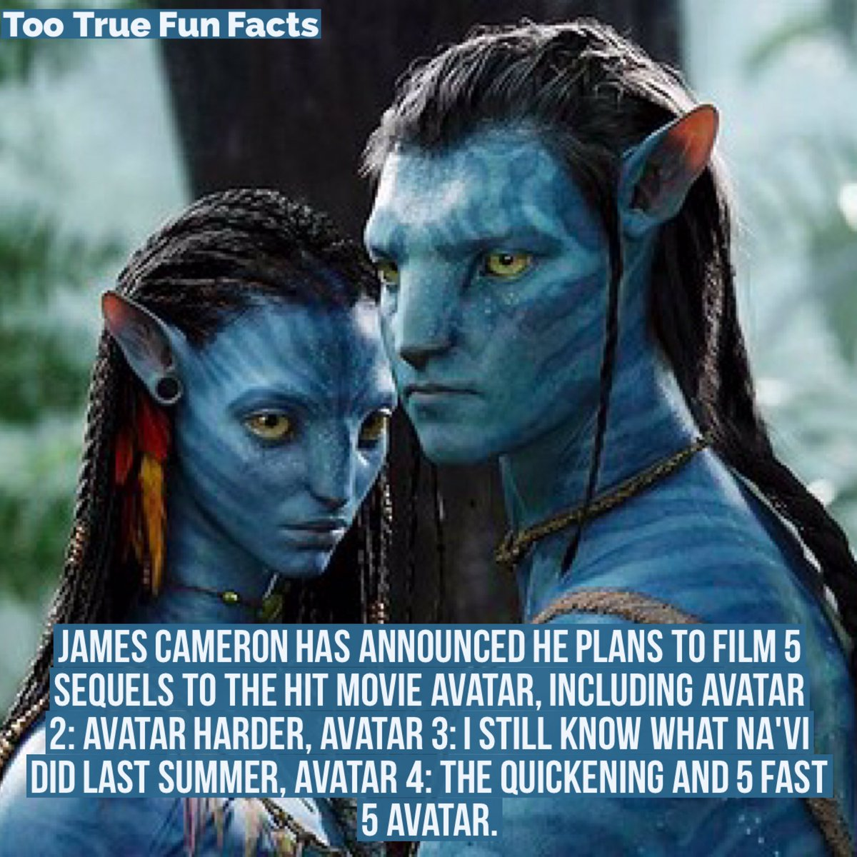 30 Best And Funny Avatar Movie Memes Ahseeit