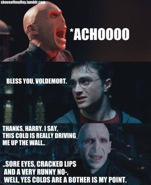 50 Best And Funny Lord Voldemort Memes Ahseeit