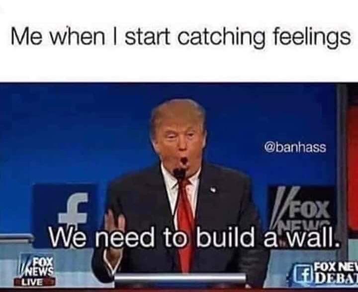 Donald Trump Version Me When I Start Catching Feeling Meme Ahseeit