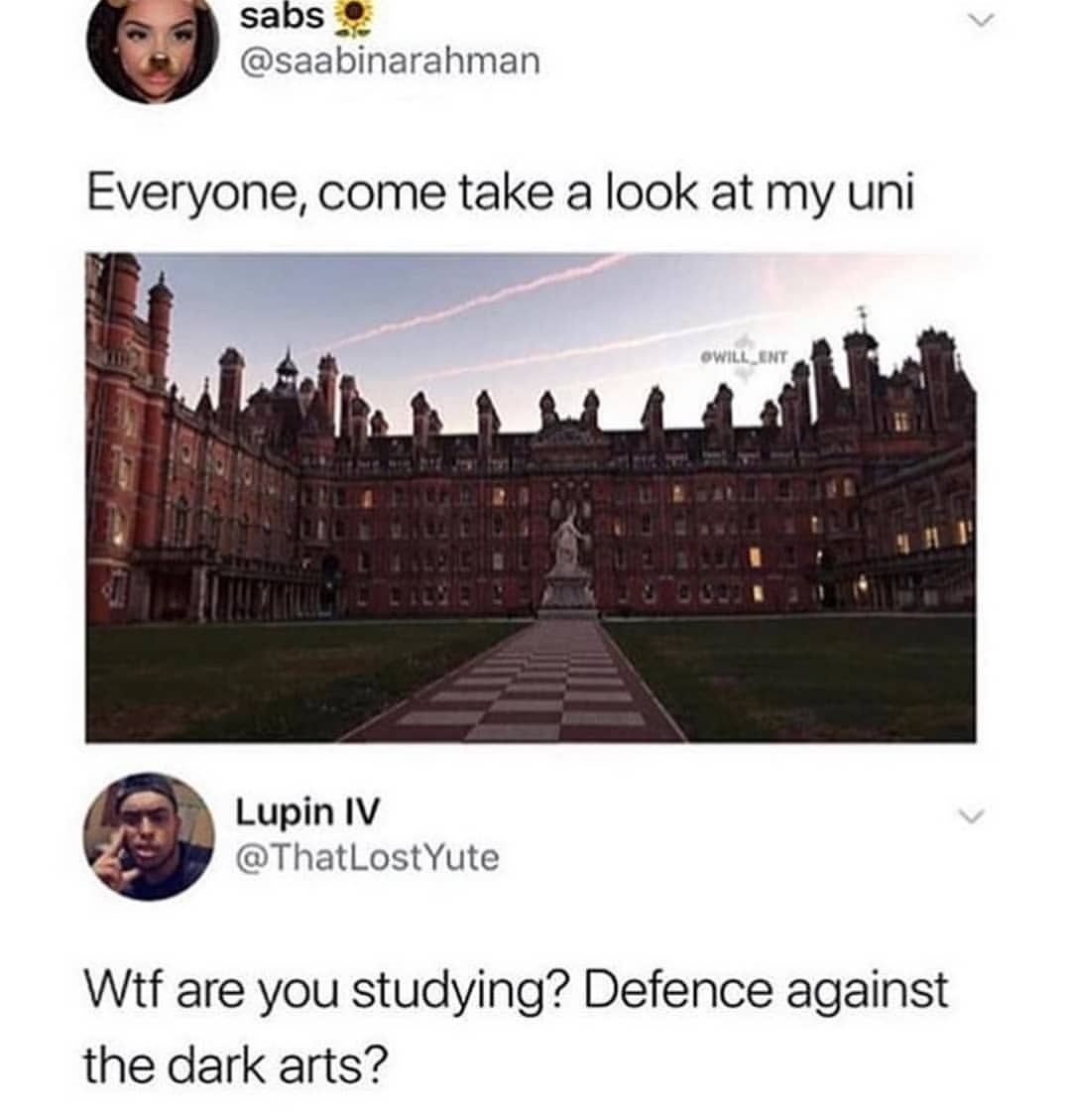 Wtf Are You Studying Defense Against The Dark Arts Meme Ahseeit