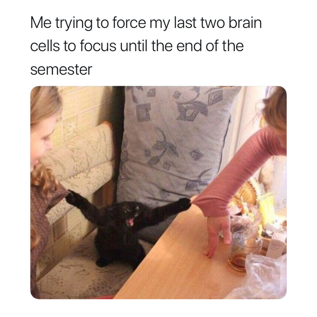 My Last 2 Brain Cells Trying To Study For Finals Finals Meme On Me Me