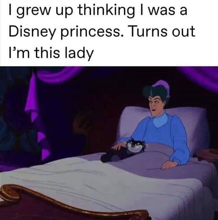 I grew up thinking I was a Disney Princess turns out I'm this lady meme - AhSeeit