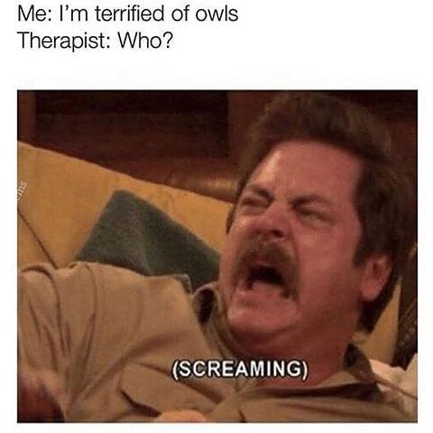 Me I M Terrified Of Owls Therapist Meme Ahseeit