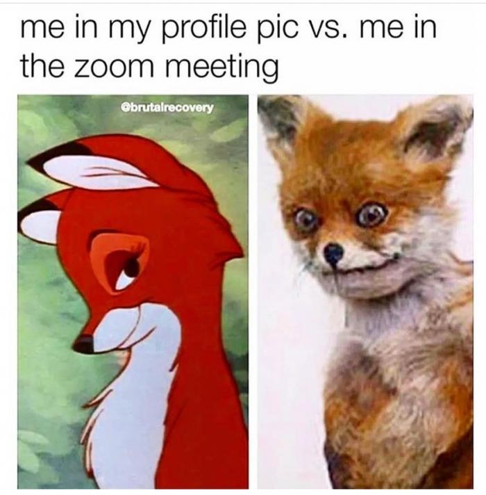 Me in my profile pic vs me in the zoom meeting meme - AhSeeit