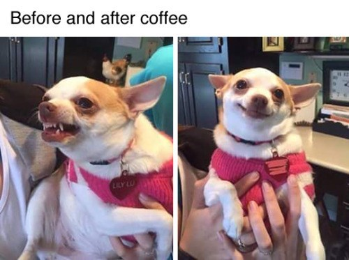 Before And After Coffee Meme Ahseeit
