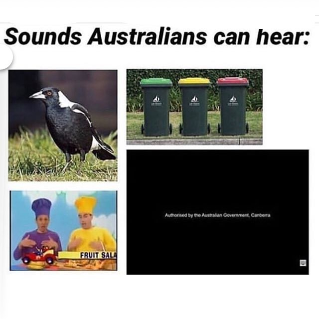 Sounds Australians can hear meme - Australia Memes