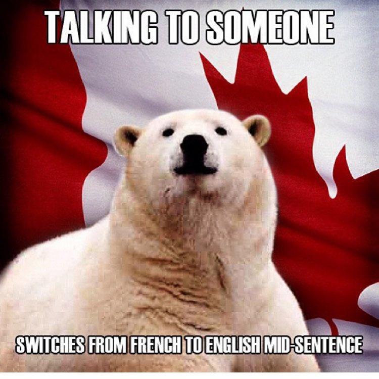 Meme French To English Meme Pict
