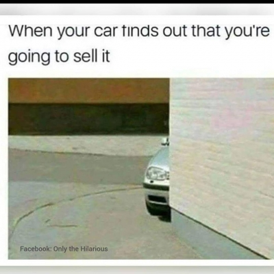 Get in loser meme