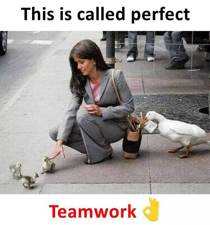 This Is Called Perfect Teamwork Meme Tamil Memes