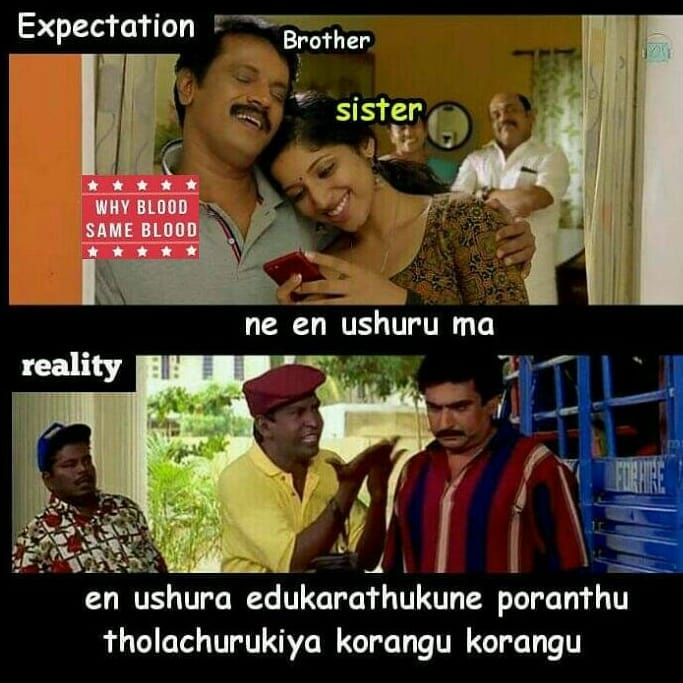 Brother And Sister Relationship Expectation Vs Reality Be Like