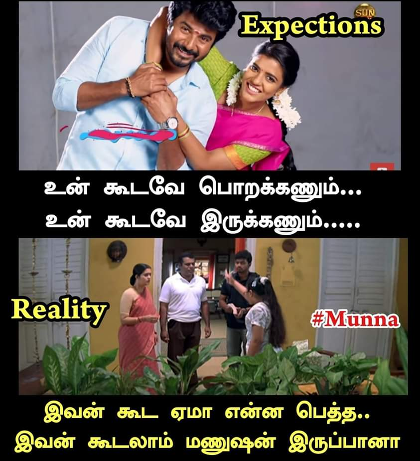 Sister And Brother Relationship Between Expectation Vs Reality