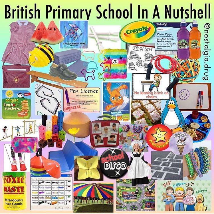 British Primary School In A Nutshell Meme United Kingdom Memes